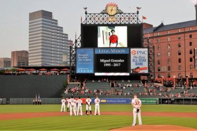 MLB》撞上卡車重創頭部 金鶯投手車禍身亡