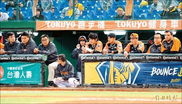 不怕被唱衰 兄弟闖台灣大賽
