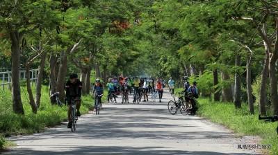 單車遨遊綠色隧道 彰化私房景點揭密