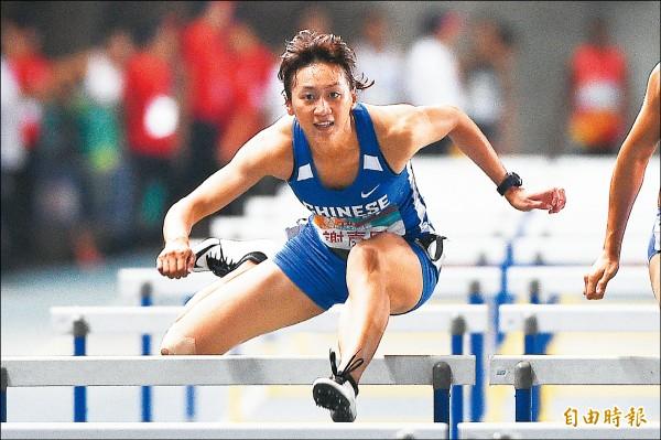台灣國際田徑公開賽》楊俊瀚、陳奎儒飆金 預告亞運加冕