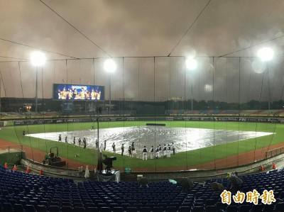 中職》賽前下雨 洲際中信兄弟對Lamigo桃猿延後開賽