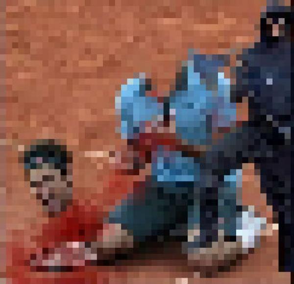 「藍貓神教教主07」所貼的費德爾斬首圖。(圖擷取自百度貼吧)