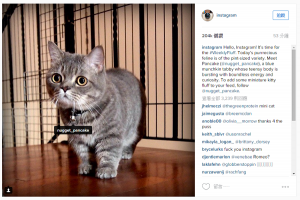 1080p 即將到來! Instagram 提升照片上傳尺寸