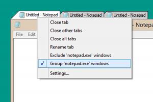 Windows 軟體也能用?透過分頁提升工作效率!