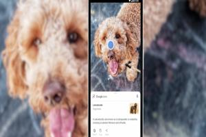 iPhone 用戶快學!Google智慧鏡頭 5 招超實用小技巧
