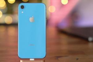 強化訊號的提升!今年度新 iPhone XR 更多細節曝光了