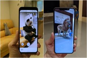 Google 搜尋「隱藏版」AR技能!手機「召喚」24款野生動物這樣做