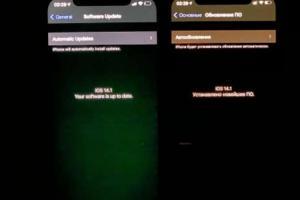 iPhone 12 頻傳「綠螢幕」災情!蘋果客服揭露原因與解決方法
