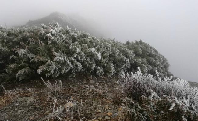 只有霧淞沒有降雪 玉山最晚初雪破紀錄