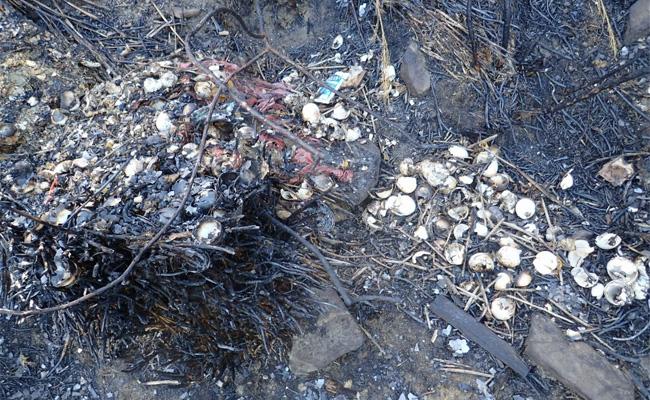 雪霸山林一把火後 人為垃圾「現形」