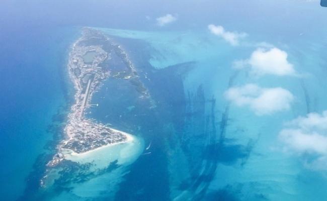 6萬人開曼群島 我國金融業放款2千多億