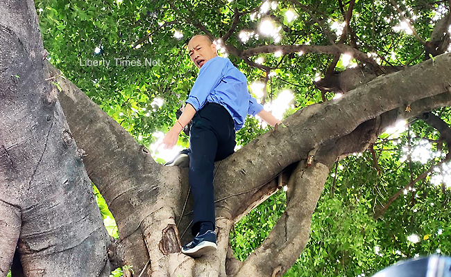 樹洞會長蚊子 韓爬樹巡視登革熱疫區