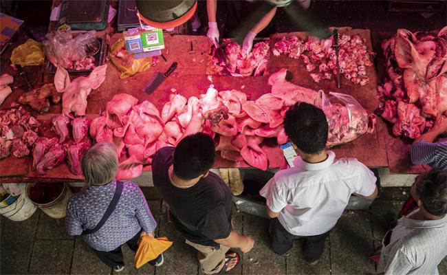 中國豬肉價格狂飆 再創歷史新高