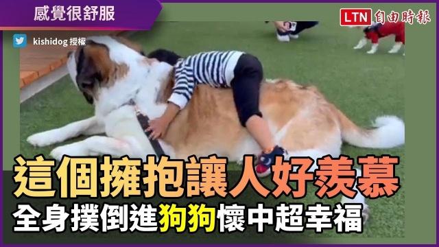 這個擁抱讓人感覺超羨慕!男童全身撲倒聖伯納犬 幸福感十足