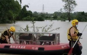 台南大雨淹養狗場 橡皮艇救出48隻毛小孩