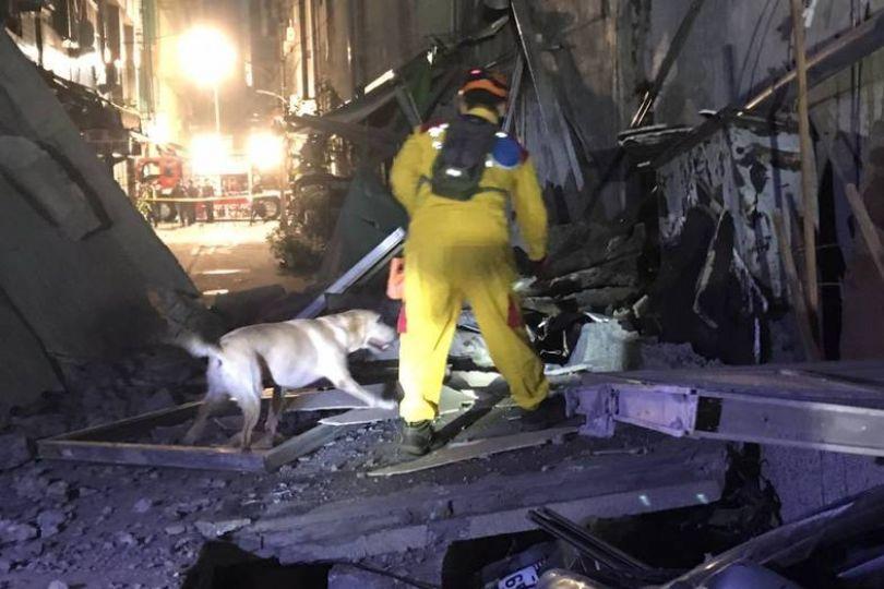 高雄舊戲院坍塌18人獲救 搜救犬到場
