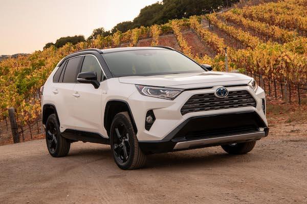 與 Toyota 合作新車曝光!掛上 Suzuki 廠徽 RAV4 Hybrid 下半年開賣