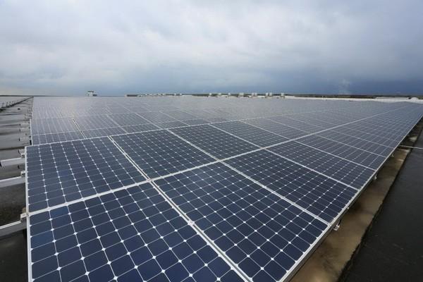 電業公積金提列入法 強制投資再生能源