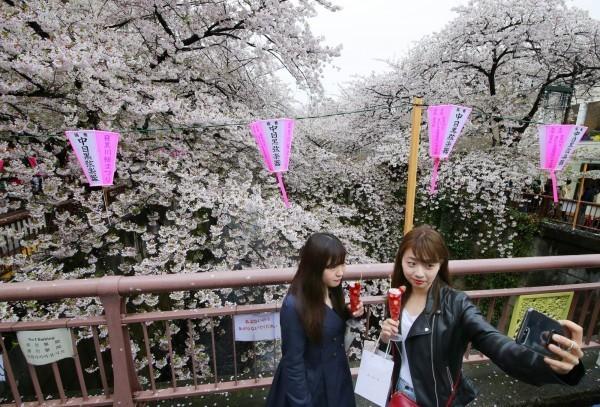 日本觀光稅新制通過 明年1月7日實施