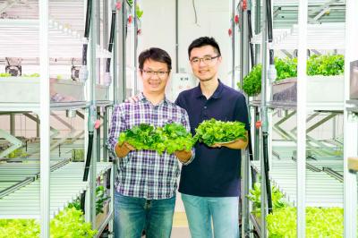 《科技與創新-7》不必再看天吃飯! 智慧溫室系統翻轉農業新契機
