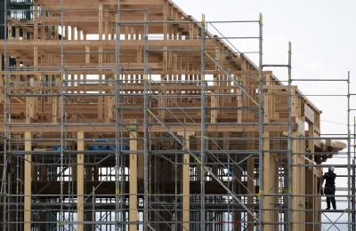 中國爆買日本九州木材 出口額刷新歷史紀錄