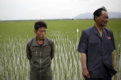 67%南韓中小企業 願意雇北韓人取代外國工人