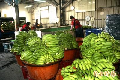 獨家》水果統戰訂單後來怎麼了? 喊5千噸香蕉8年才買一半