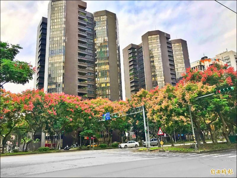 台北好野人買房「阿沙力」 近2成直接付現金