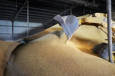 雪中送炭!中國停購美農產品 「神秘買家」向美買16.5萬噸大豆