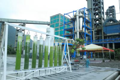 《科技與創新》從排碳大戶到養生專家 微藻固碳助水泥業走永續之路