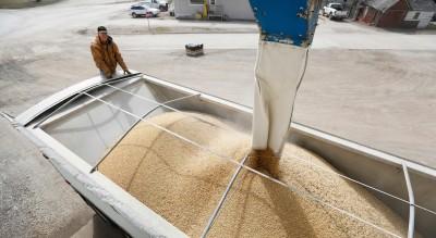 中承諾買2千萬噸美大豆 美農業部:買不到一半