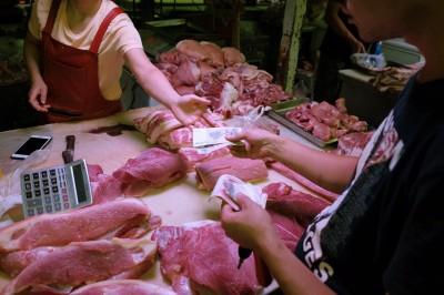 非洲豬瘟衝擊 中國進口豬肉量估2年內翻倍