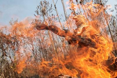 G7擬砸近7億救亞馬遜大火  美官員:要巴西政府願意