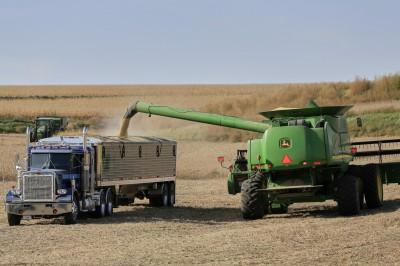 中國爆不願買500億美元農產 還想「交由市場決定」