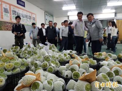 農委會加碼釋迦外銷運費補助 4月底前在新南向國家辦90場企銷