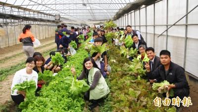 嘉義百大青農推有機農產體驗 讓更多人瞭解農業價值