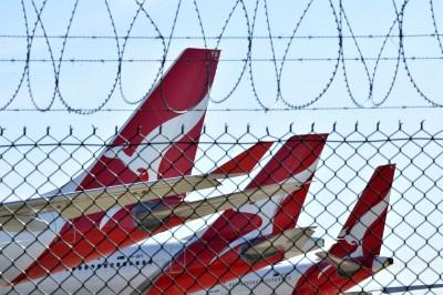 武漢肺炎》救業績!澳洲航空最熱門航線僅賣不到400元