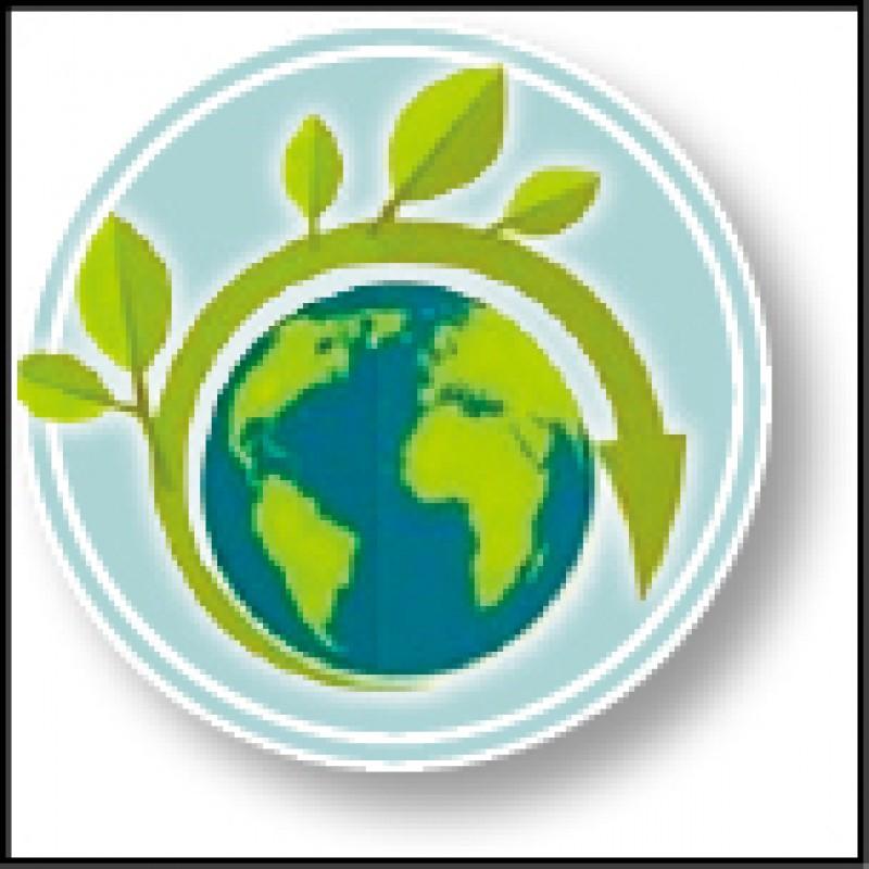 丟掉口號 打拚新經濟》綠能冠亞太 業界就怕政策延宕