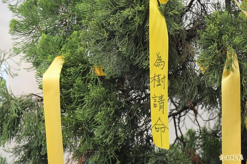 台糖董座帶隊遊說設光電專區 萬巒鄉民綁黃絲帶為樹請命