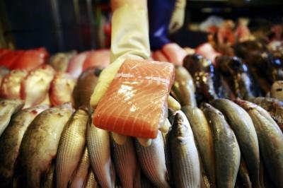 LTN經濟通》北京爆新疫情 為何全賴給「鮭魚」?