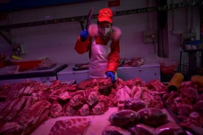 屠宰場疫情爆出後 中國停止進口大部分荷蘭豬肉