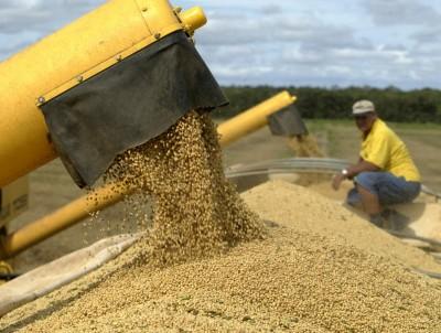 中國6月份進口巴西大豆總量達1051萬噸 創歷史新高