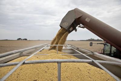 達不到365億美元採購目標?路透:中國需爆買美農產品