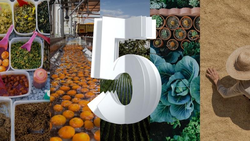 舊金山Think大會  IBM:5年內改變食品供應鏈每個環節