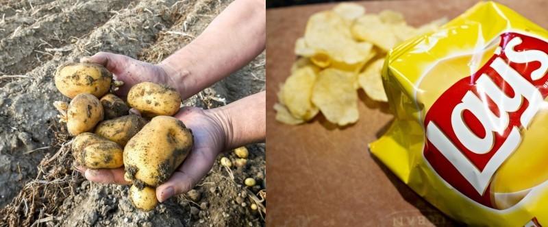 印度農民馬鈴薯侵權案 百事公司:願和解
