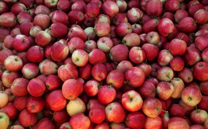 中國蘋果價格飆漲 引起北京當局正視