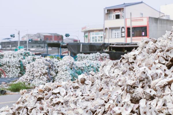 《科技與創新》工研院攜手台糖 化廢棄牡蠣殼為醫藥級原料