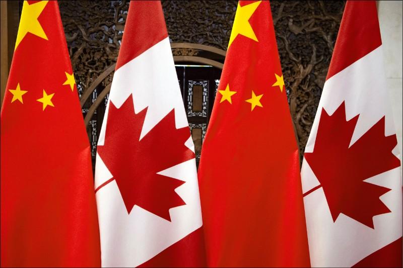 中國封殺油菜籽進口 加拿大向WTO申訴