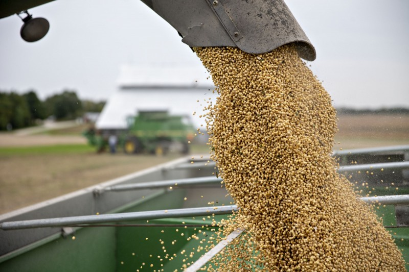 血拼模式開啟?中國連2個交易日買美國大豆