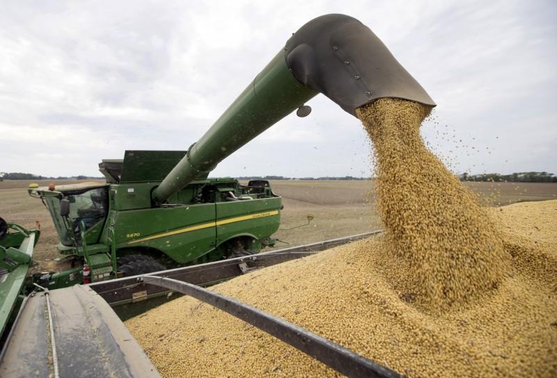 台灣再向美購買近681億大豆玉米 被讚「守信且可靠的買家」